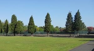 Hpark_tennis
